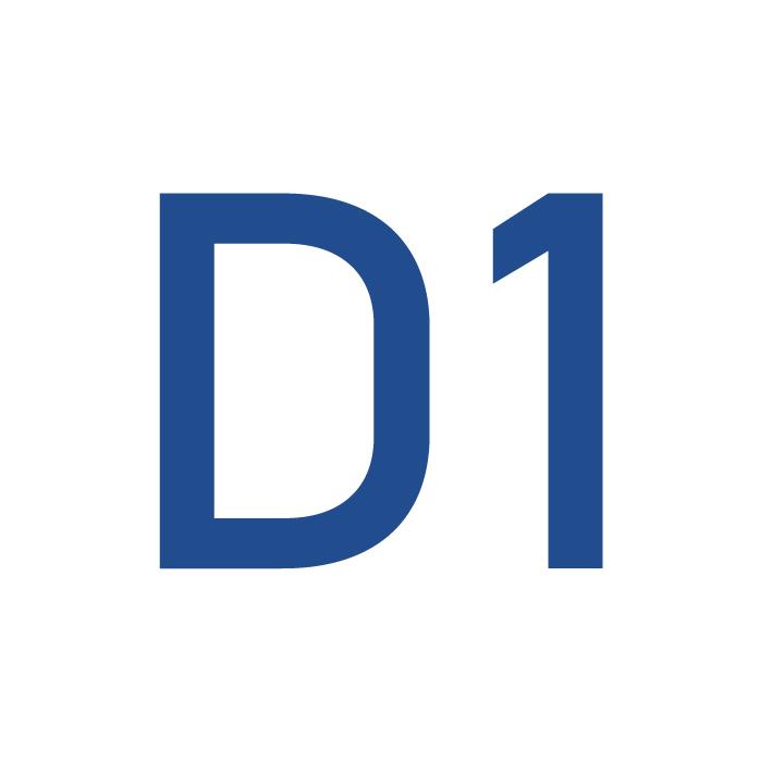 Praktiniai patarimai darbui su D1